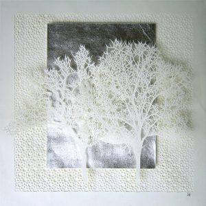 2 arbres blancs