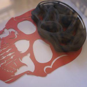 Crâne 2 détail